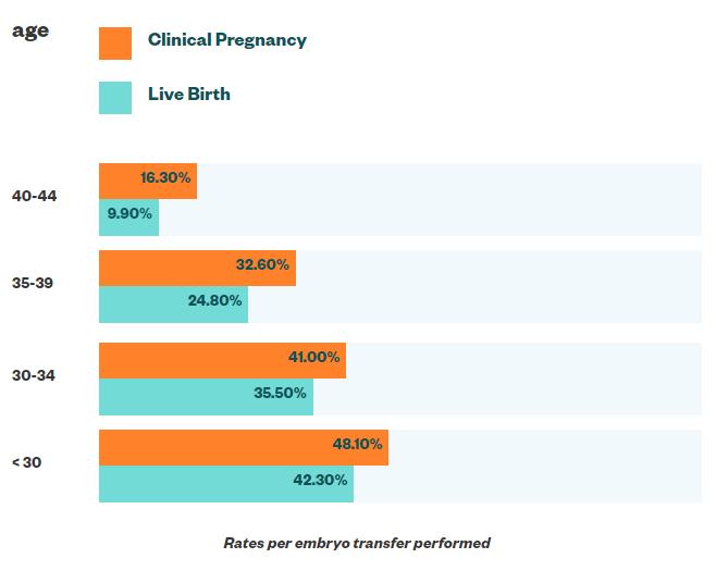 Fresh embryo transfer success rates