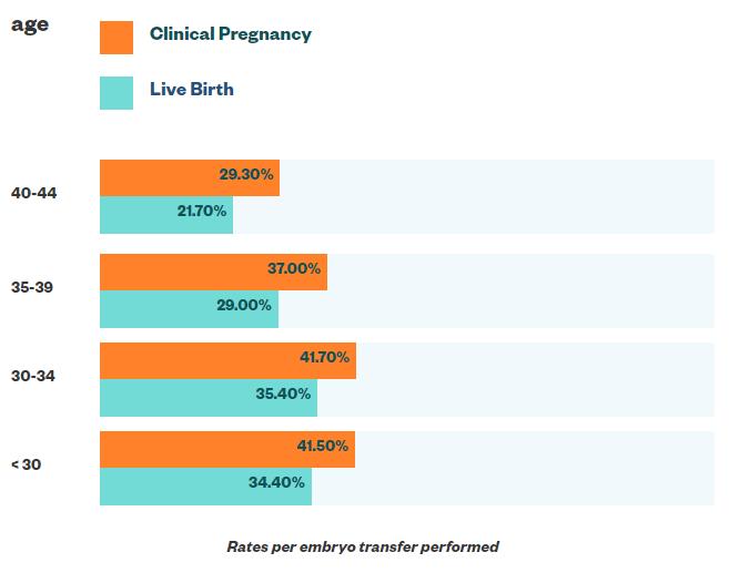 Frozen embryo transfer success rates